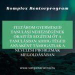 Komplex mentorprorgam